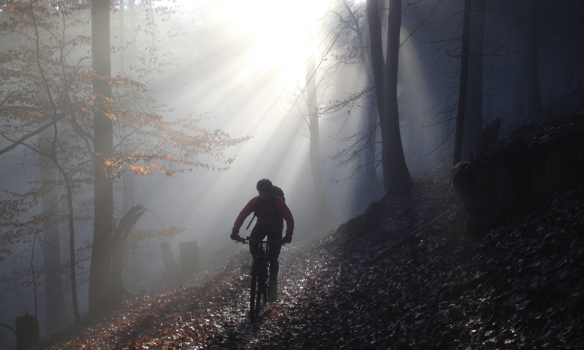 Mountainbike Neustadt an der Weinstraße